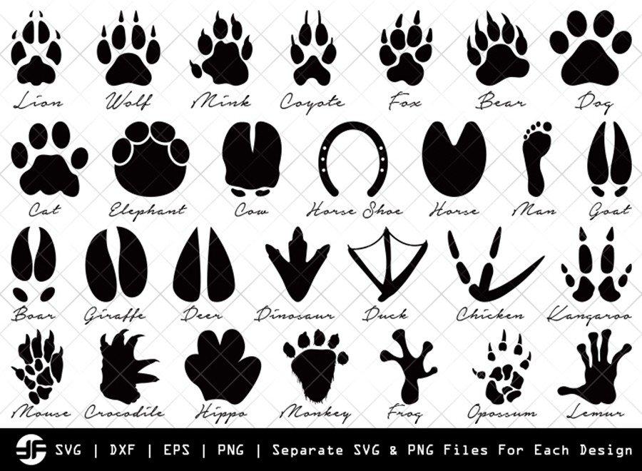 Animal Paw SVG | Animal SVG | Silhouette Bundle | Cut File