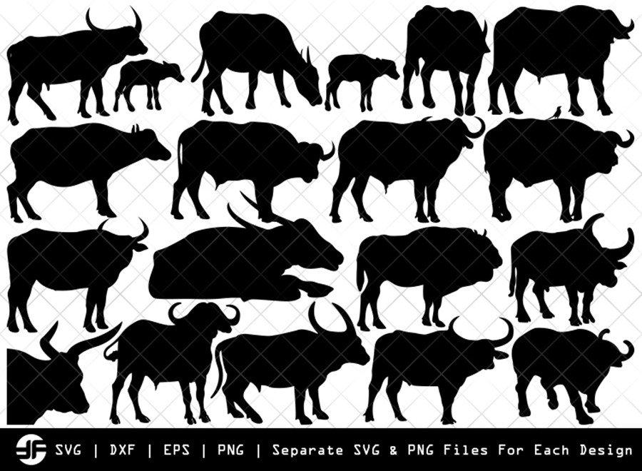 Buffalo SVG   Animal SVG   Silhouette Bundle   SVG Cut File