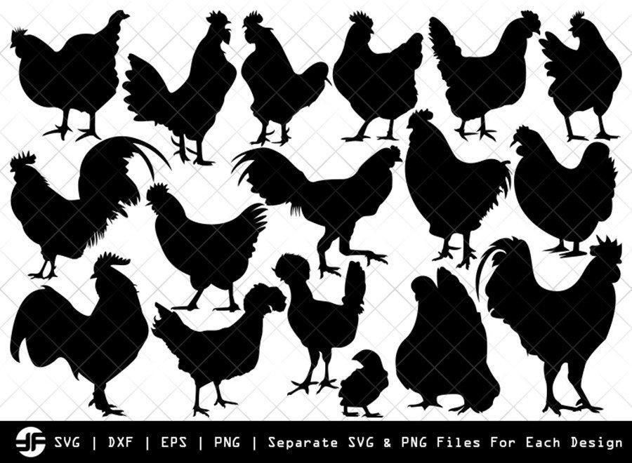 Chicken SVG   Animal SVG   Silhouette Bundle   Cut File