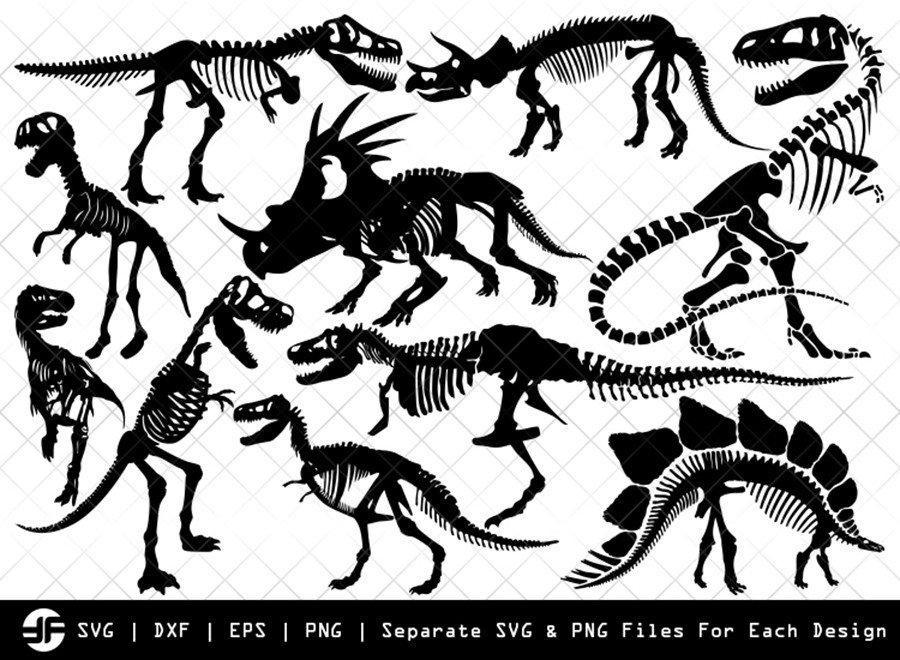 Dinosaur Skeleton SVG | Animal | Silhouette Bundle | Cut File
