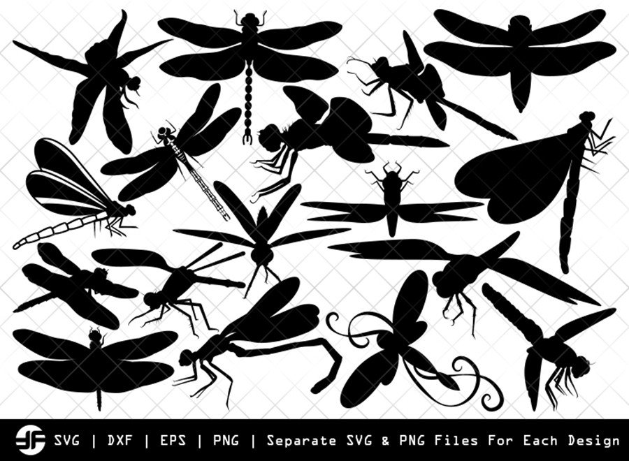 Dragonfly SVG   Insect SVG   Silhouette Bundle   SVG Cut File