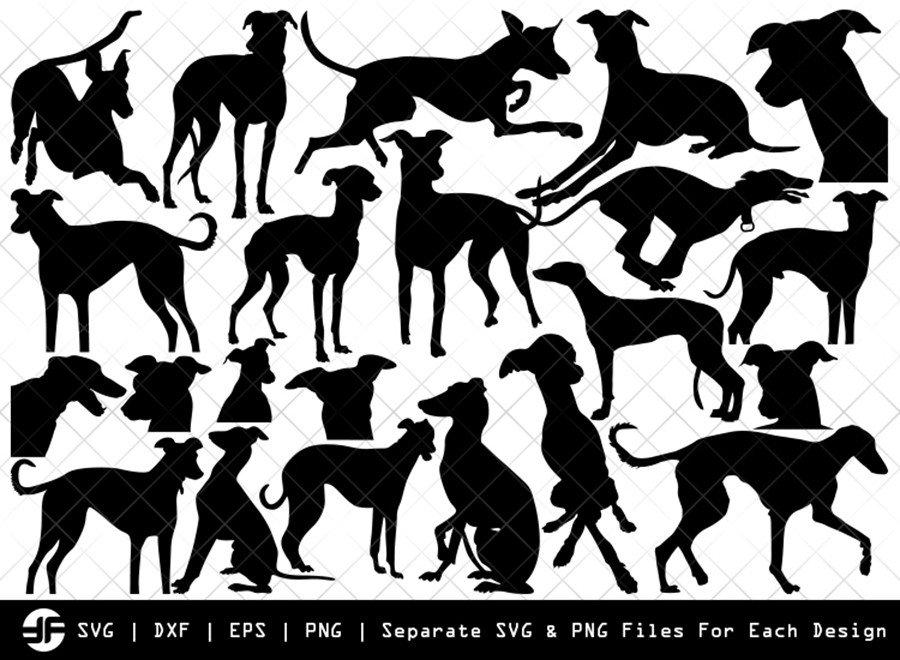 Greyhound Dog SVG   Animal   Silhouette Bundle   Cut File