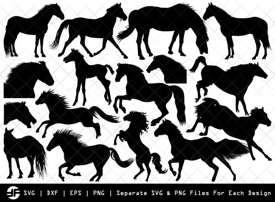 Horse SVG   Animal SVG   Silhouette Bundle   SVG Cut File