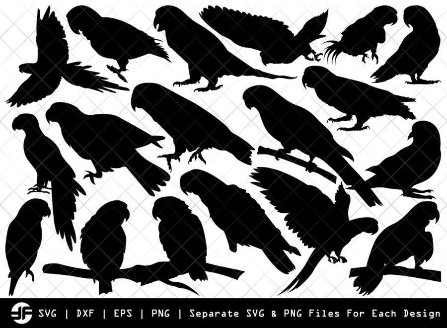 Parrot SVG | Parrot Bird Silhouette Bundle | SVG Cut File