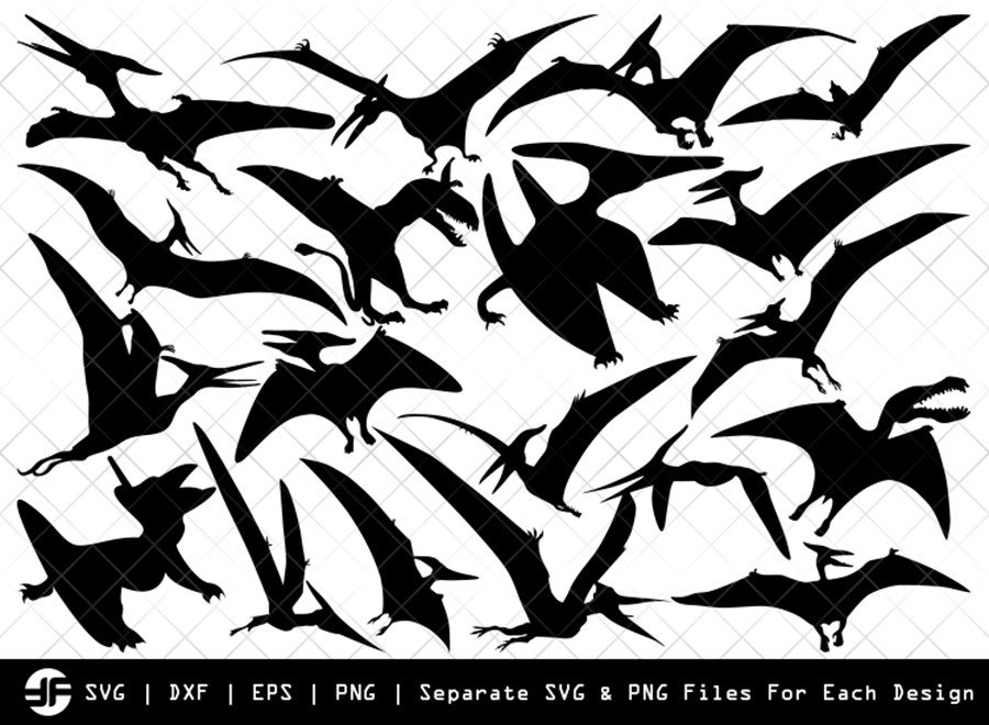 Pteranodon SVG | Animal SVG | Silhouette Bundle | Cut File