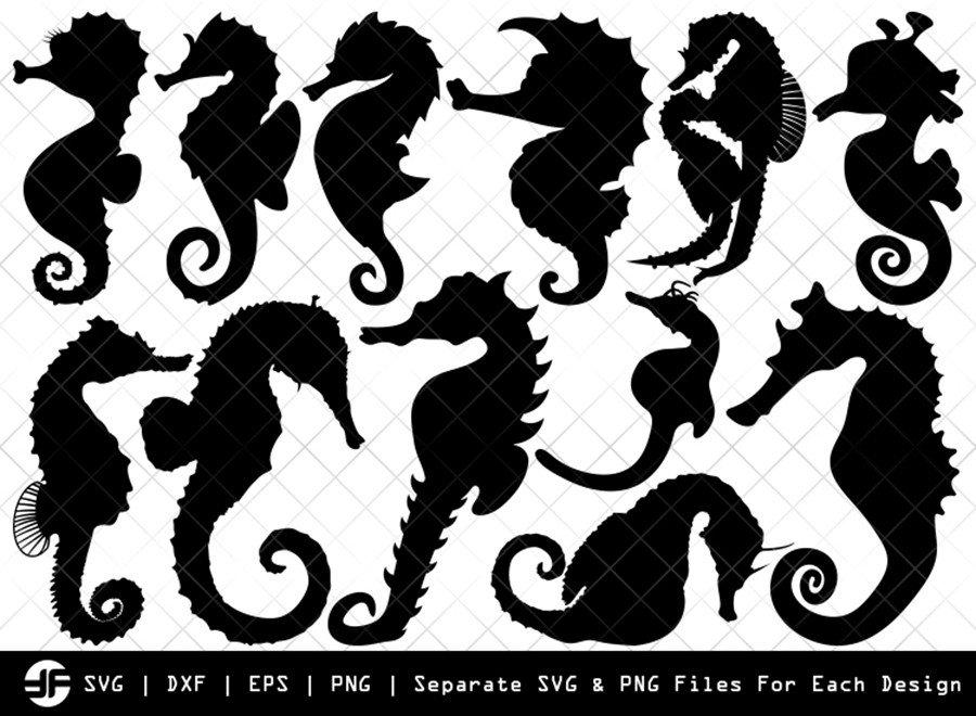 Seahorse SVG | Animal SVG | Silhouette Bundle | Cut File