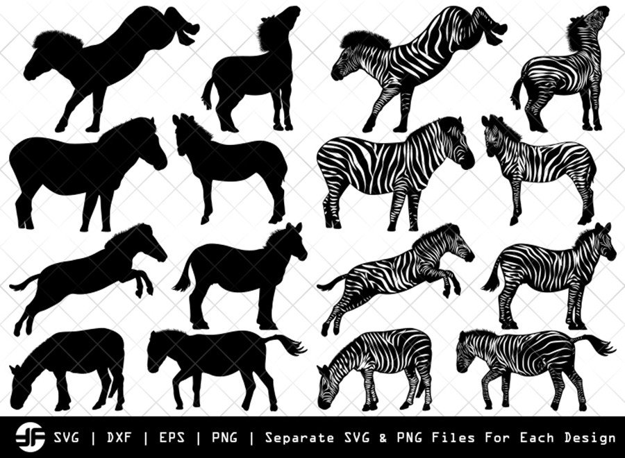 Zebra SVG   Animal SVG   Silhouette Bundle   SVG Cut File
