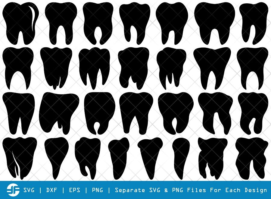 Tooth SVG Cut Files   Dentist Tooth Silhouette Bundle