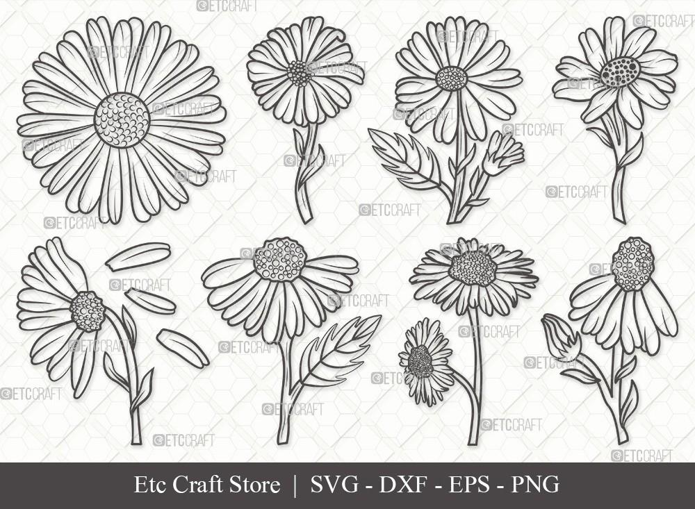 Daisy Flower Outline SVG | Daisy Flower Svg