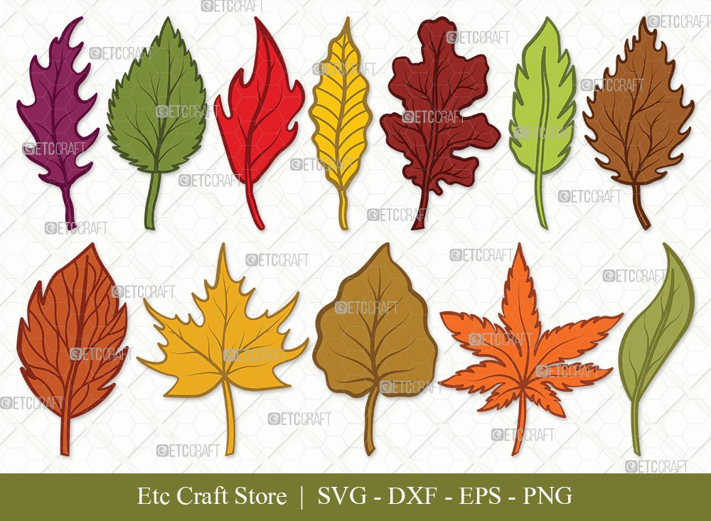 Fall Leaf Clipart SVG Cut Files | Fall Leaves Svg Bundle