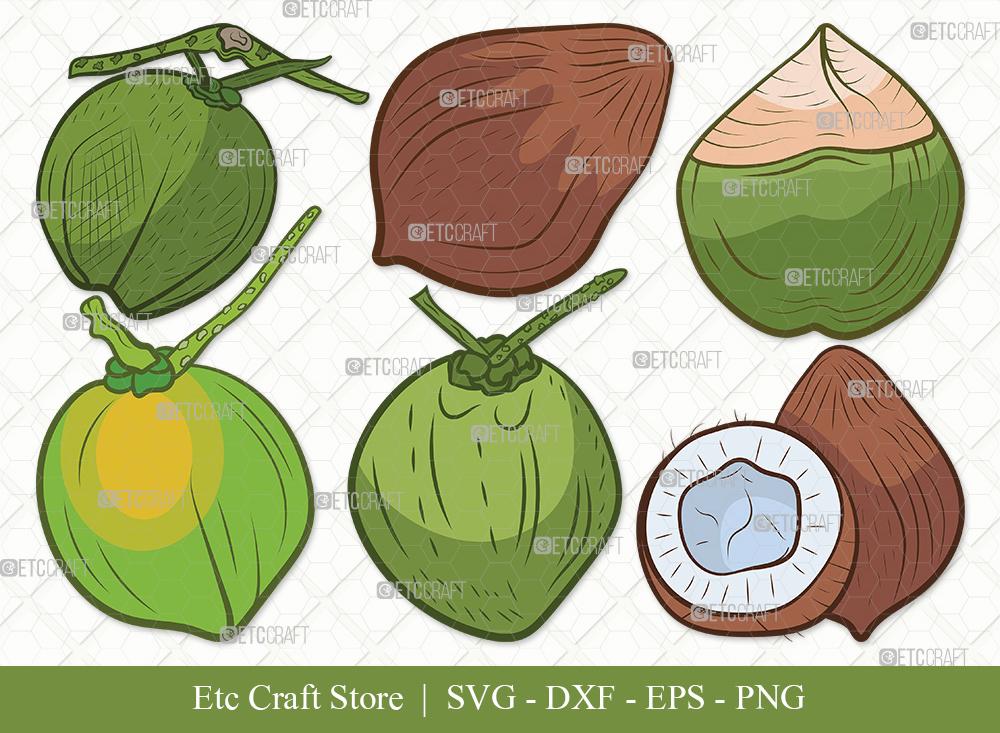 Coconut Clipart SVG Cut File   Fruit Svg