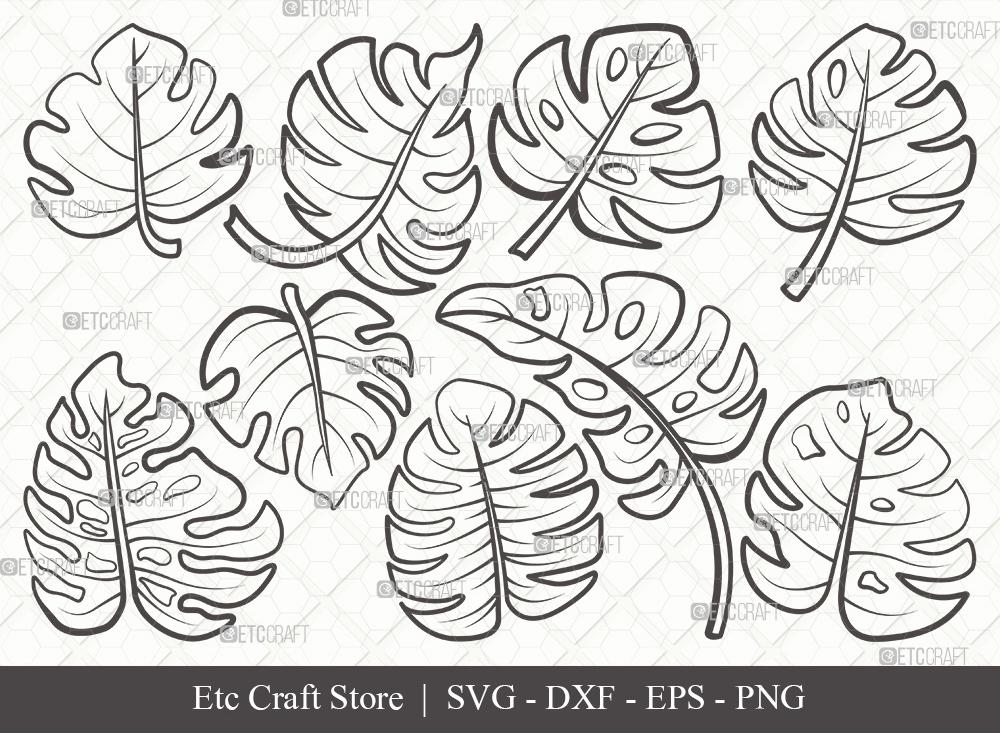 Monstera Leaf Outline SVG | Leaves SVG