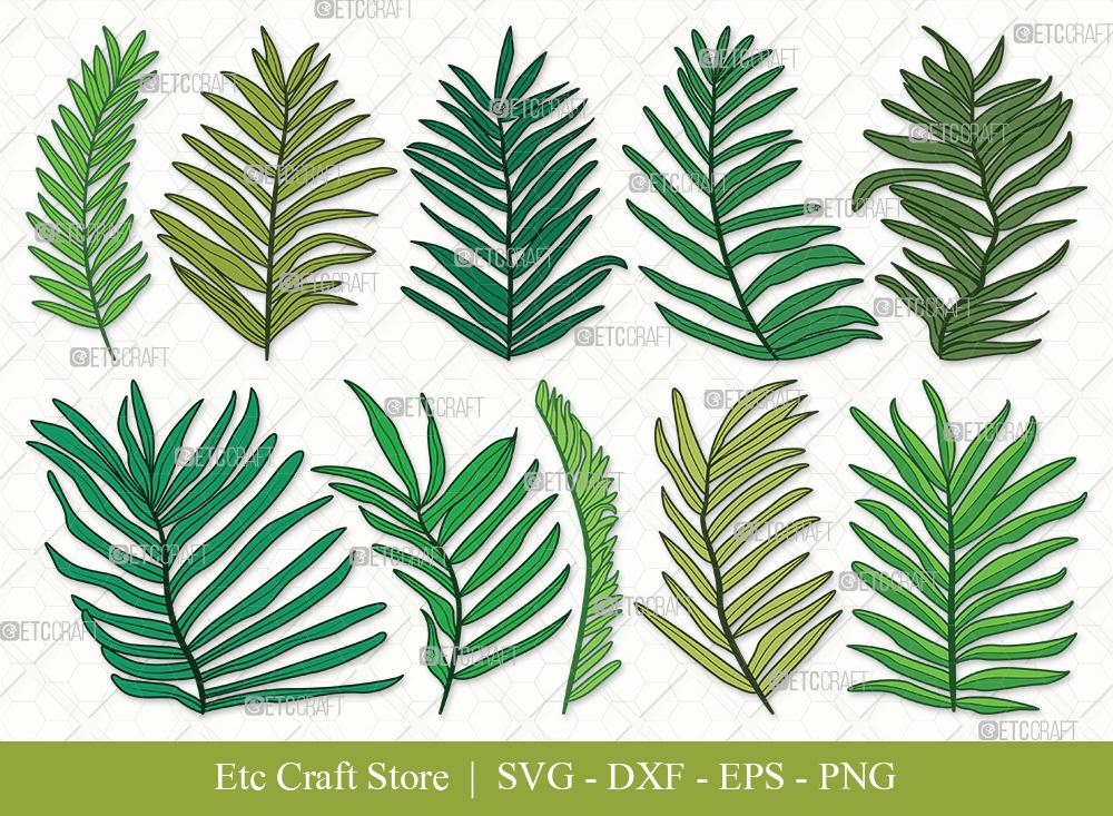 Palm Leaves Clipart | Palm Leaf Svg | Plants Svg