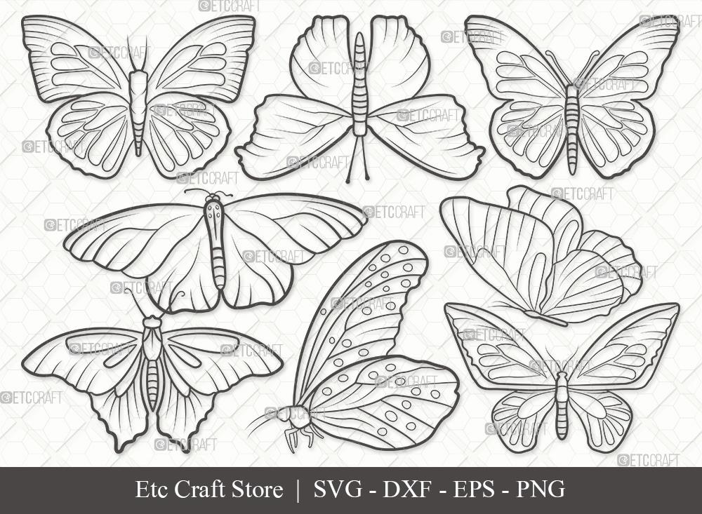 Butterfly Outline SVG | Butterflies SVG Bundle